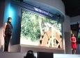 H μεγαλύτερη OLED οθόνη στον κόσμο